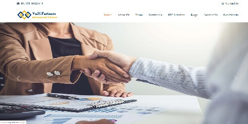 VnM Partners